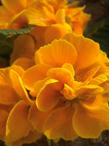 2008年、春