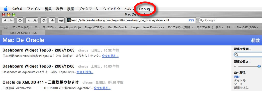 Safari_with_debug_menu